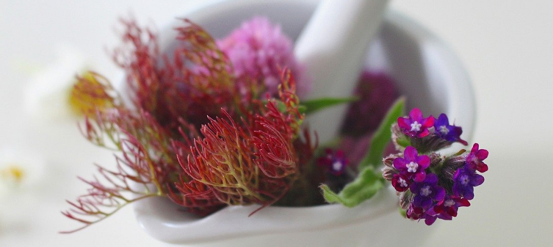 Natural Remedies For Healthy Teeth 2