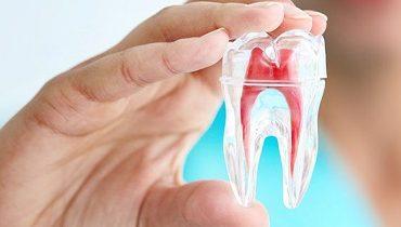 os-dentistry-header-banner-379